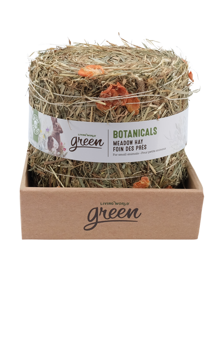 Botanicals Meadow Hay Bale – Carrot